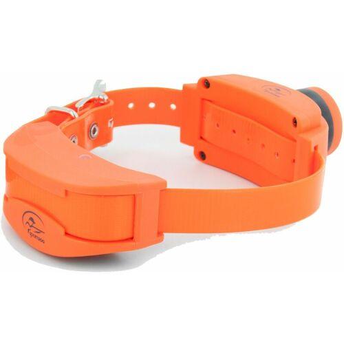 SPORTDOG Zusatz Hundehalsband elektrisches Hunde Erziehungshalsband mit Pieper