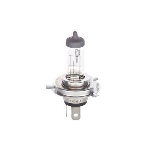 Bosch Glühbirnen  1 987 301 405 Glühbirne,Birnen,Birne