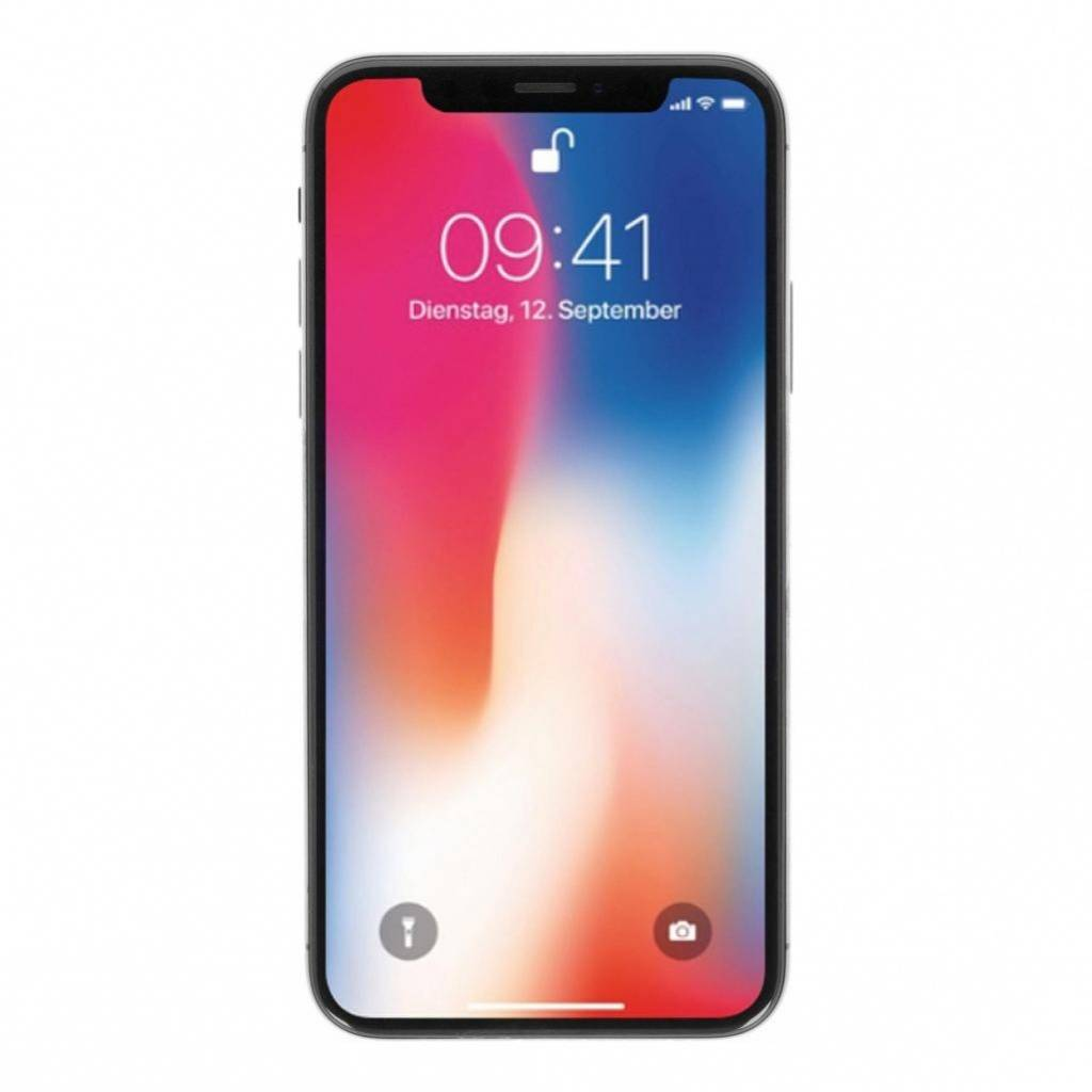 Apple Gebraucht: Apple iPhone X 64GB spacegrau