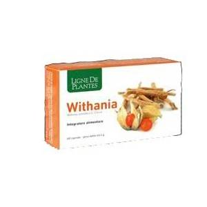 NATURA SERVICE Srl Withania 60cps