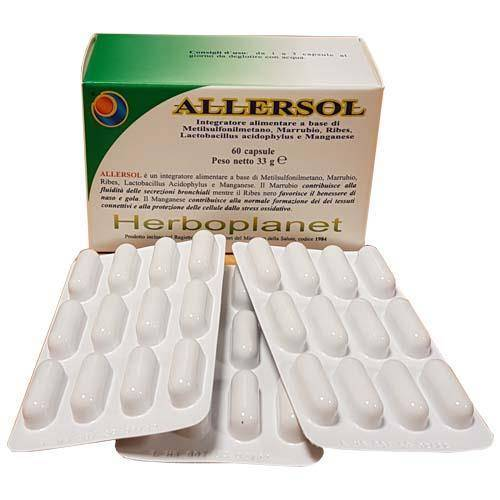 HERBOPLANET Srl Herboplanet Allersol Supplement 60 Kapseln