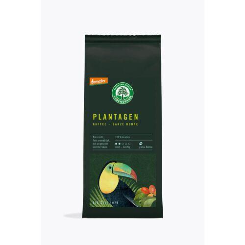 Lebensbaum Plantagen Kaffee 250g