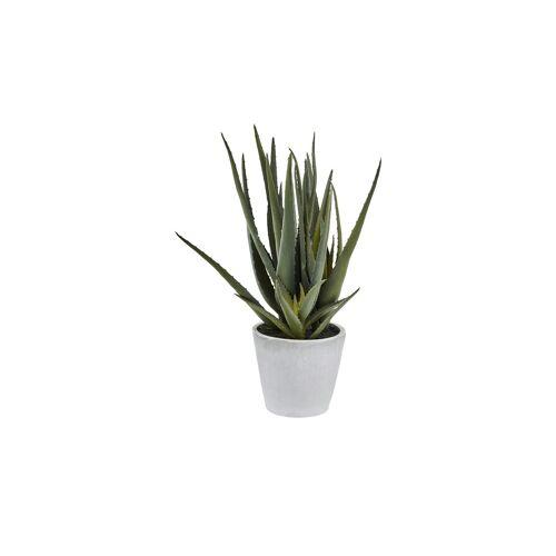Höffner Aloe im Topf  Kunstblume ¦ grün ¦ Keramik, Kunststoff ¦ Maße (cm): H: