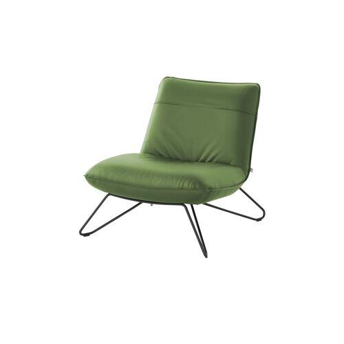 ROLF BENZ Sessel  394 ¦ grün