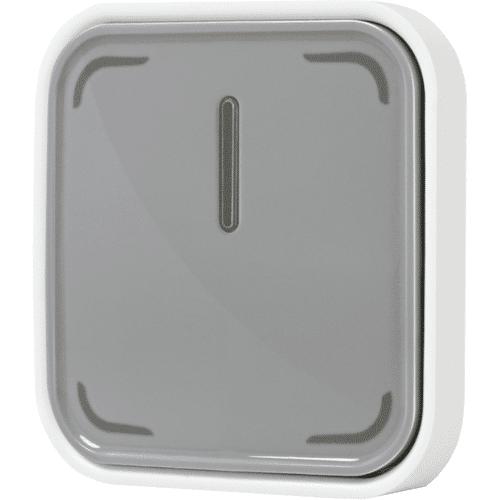 LEDVANCE SMART+ Switch Grau