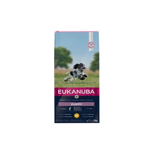 Eukanuba Puppy Medium Breed Huhn Hundefutter 3 kg