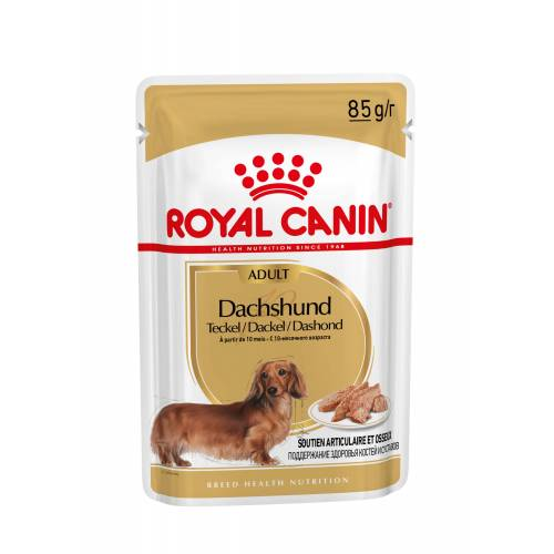 Royal Canin Adult Dachshund Nassfutter 4 x (12 x 85 Gramm)