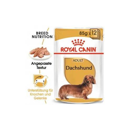 Royal Canin Dachshund Adult Nassfutter 2 x (12 x 85 Gramm)