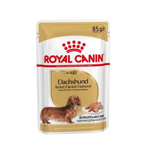 Royal Canin Adult Dachshund Nassfutter 2 x (12 x 85 Gramm)