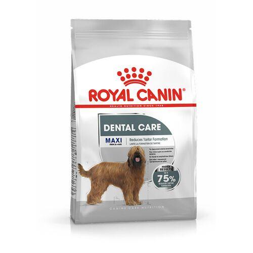 Royal Canin Size Royal Canin Dental Care Maxi Hundefutter 2 x 3 kg