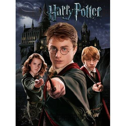 Harry Potter Poster Harry Potter Harry Ron Hermione Harry Potter