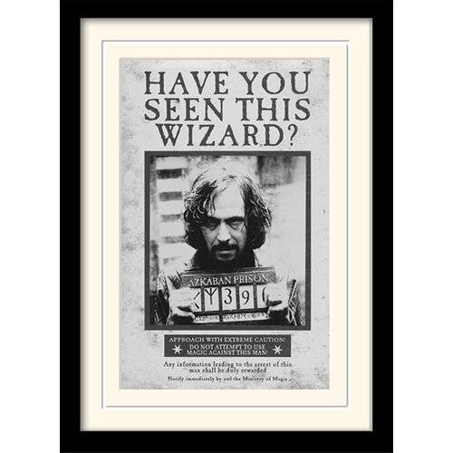 Harry Potter Poster Harry Potter Sirius - Wanted Harry Potter