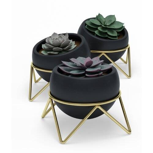 Umbra 3-tlg. Blumentopf-Set Potsy aus Keramik Umbra