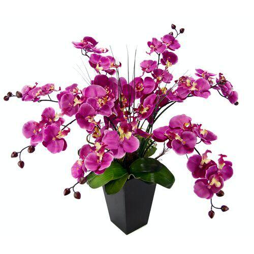 Die Saisontruhe Kunstblume Orchidee im Topf Die Saisontruhe Blumen Farbe: Dunkelrosa