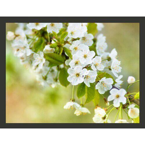 East Urban Home Fototapete Zweig mit weißen Kirschblüten 270 cm x 350 cm East Urban Home