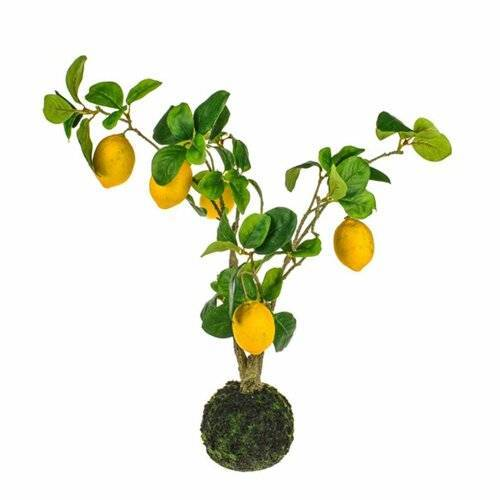 Die Saisontruhe Kunstbaum Zitronenbaum Die Saisontruhe