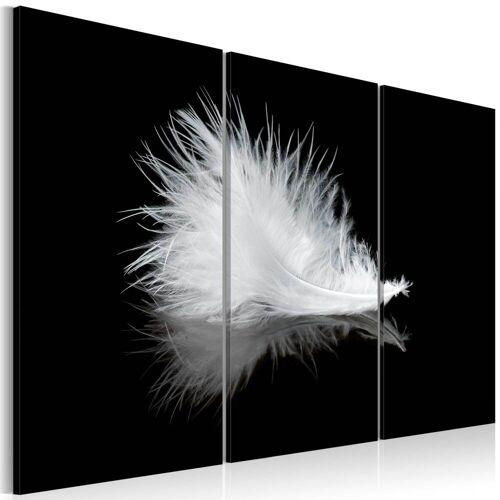 Artgeist Wandbild - Ein Federchen