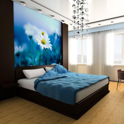 Artgeist Fototapete - Gänseblümchen auf blauer Wiese