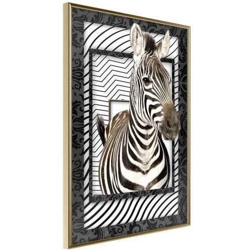 Artgeist Poster - Zebra in the Frame