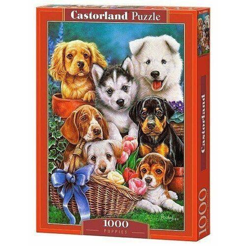 Castorland Puzzle Castorland 1000 Teile PUPPIES