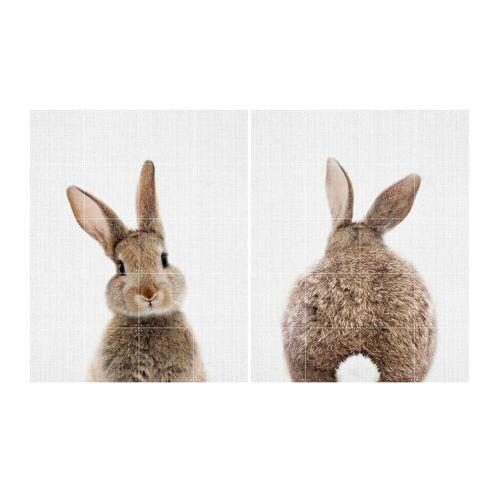 IXXI - Rabbit, 80 x 100 cm