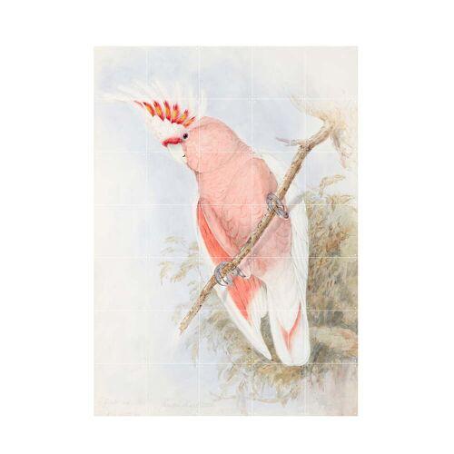 IXXI - Pink Kakadu Wandbild, 100 x 140 cm