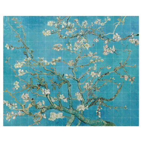 IXXI - Mandelblüte (Van Gogh), 320 x 260 cm