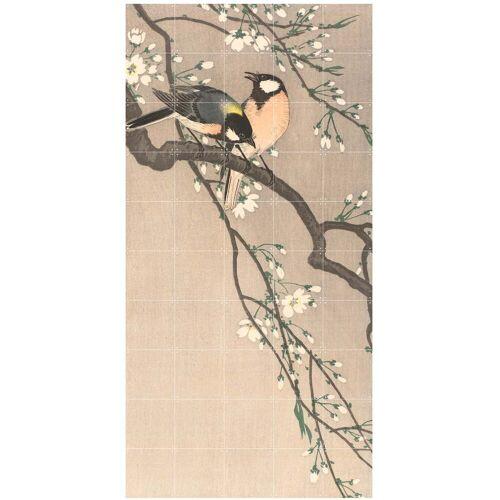 IXXI - Kohlmeisen auf einem Kirschbaum (Koson), 100 x 200 cm