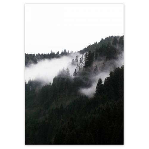 artvoll - Foggy Forest Poster, 50 x 70 cm