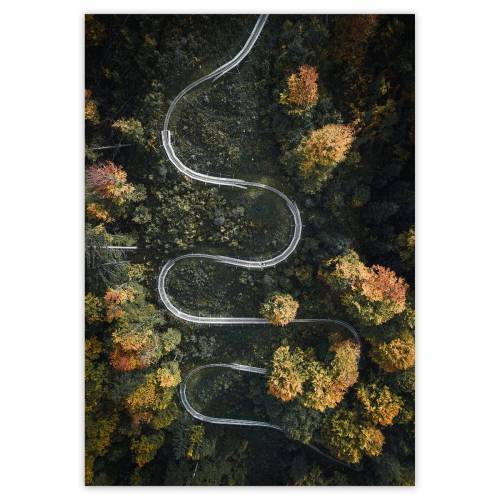 artvoll - Serpentine Poster, 30 x 40 cm