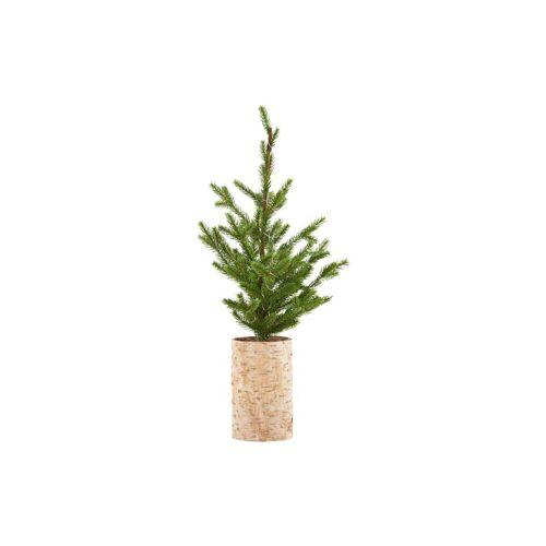 House Doctor - Weihnachtsbaum mit LED-Beleuchtung, H 64 cm