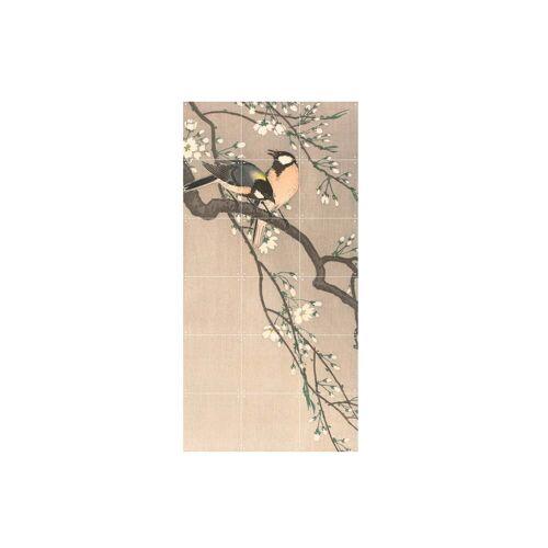 IXXI - Kohlmeisen auf einem Kirschbaum (Koson), 60 x 120 cm