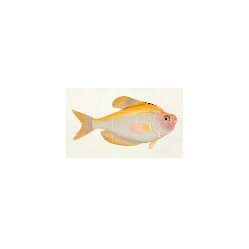 IXXI - Gelber Fisch (Bloch), 100 x 60 cm