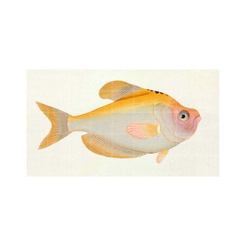 IXXI - Gelber Fisch (Bloch), 180 x 100 cm