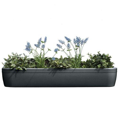 Rephorm - windowgreen Fensterbank Blumenkasten, graphit