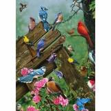 Cobble Hill / Outset Media Wildbird Gathering 35 Teile Puzzle Cobble-Hill-58889