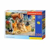 Castorland Gathering Friends 300 Teile Puzzle Castorland-030255