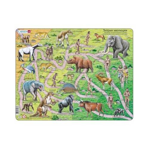 Larsen Rahmenpuzzle - Der Weg vom Affen zum Menschen (auf Russisch) 83 Teile Puzzle Larsen-HL3-RU