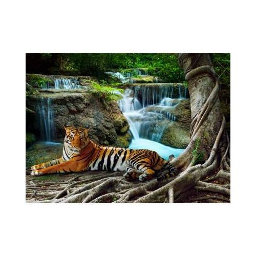Grafika Tiger 300 Teile Puzzle Grafika-01562