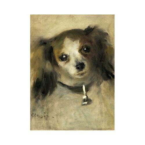 Grafika Auguste Renoir: Head of a Dog, 1870 300 Teile Puzzle Grafika-01866