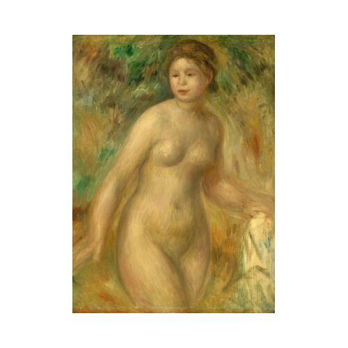 Grafika Auguste Renoir : Nude, 1895 300 Teile Puzzle Grafika-01876