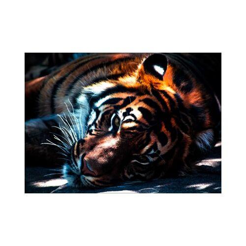 Grafika Kids Tiger 24 Teile Puzzle Grafika-Kids-00963