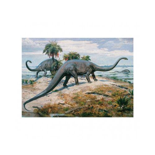 Dino Dinosaurier 1000 Teile Puzzle Dino-53202