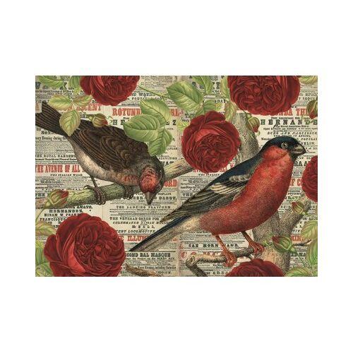 Jumbo Vögel lieben Blumen 500 Teile Puzzle Jumbo-18398