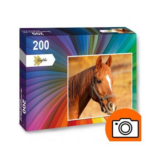 Planet'Puzzles - Puzzles Photo 200 Teile Fotopuzzle 200 Teile Puzzle PP-Photo-200