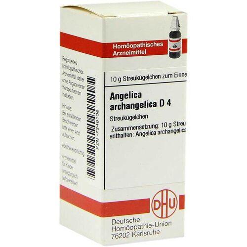 Angelica Archangelica D 4 Gl