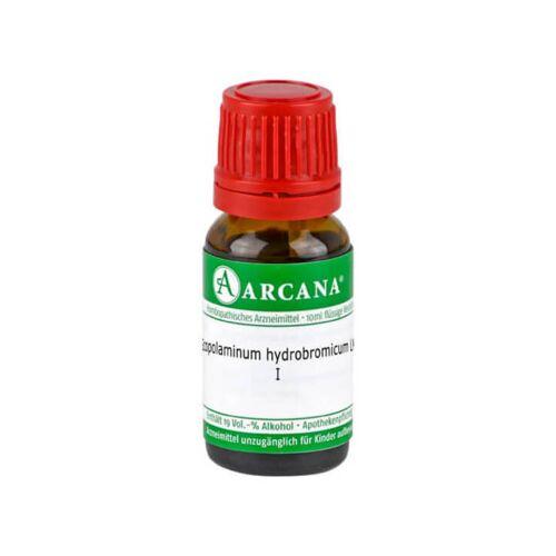 Scopolaminum Hydrobromicum LM 01 Dilution