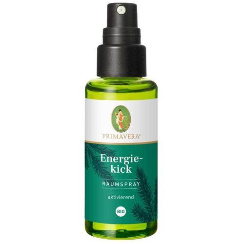 Primavera Energiekick Raumspray Bio