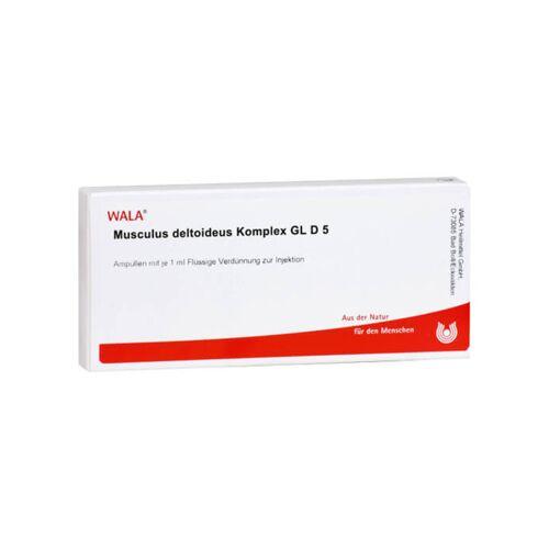 Musculus Deltoideus KOMP. GL D 5 Ampullen
