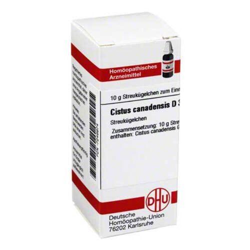 DHU Cistus canadensis D 30 Globuli